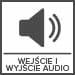 kamery_Wejścia i wyjścia audio